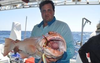 Montebello island fishing