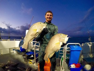 abrolhos islands dive charters