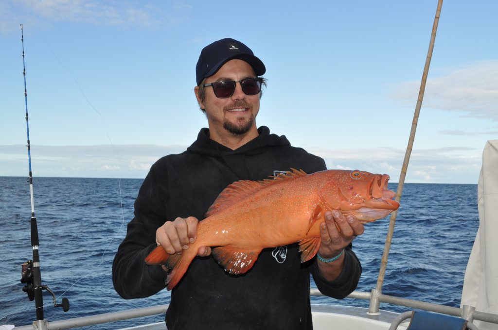 abrolhos islands fishing charters
