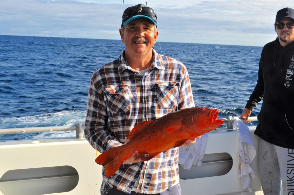 coaral trout fishing abrolhos