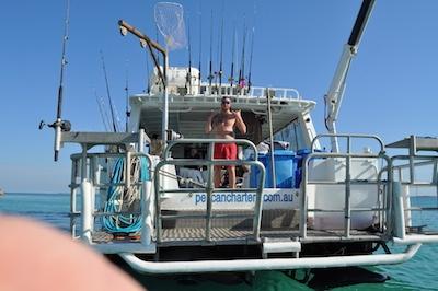 marlin board