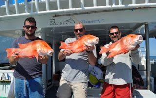 Perth Fishing charters