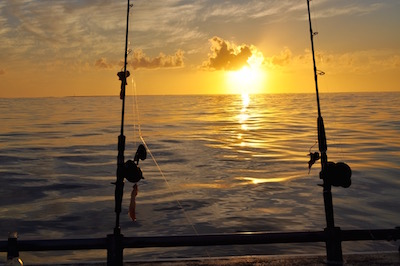 Abrolhos islands fishing