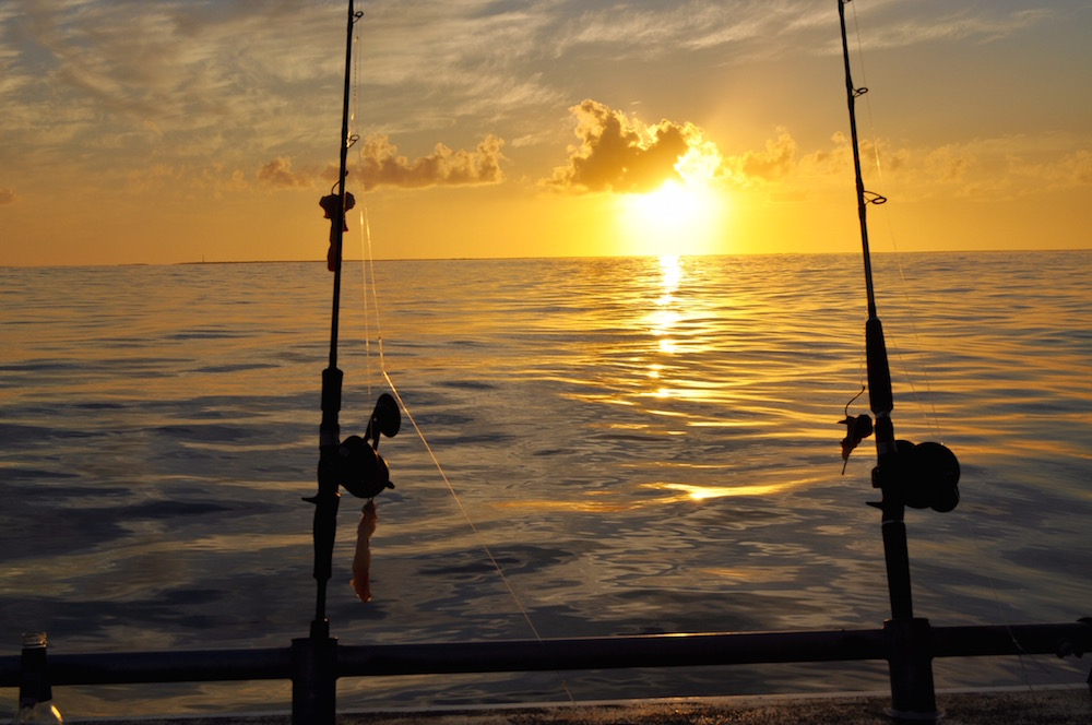 Western Australia fishing charters