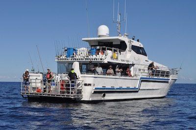 Live aboard trips Western Australia