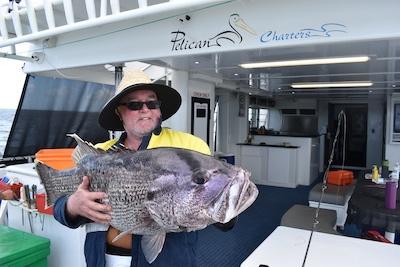 west australian duefish