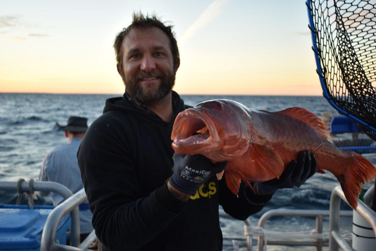 abrolhos islands fishing season