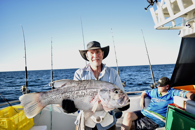 big game fishing charters australia