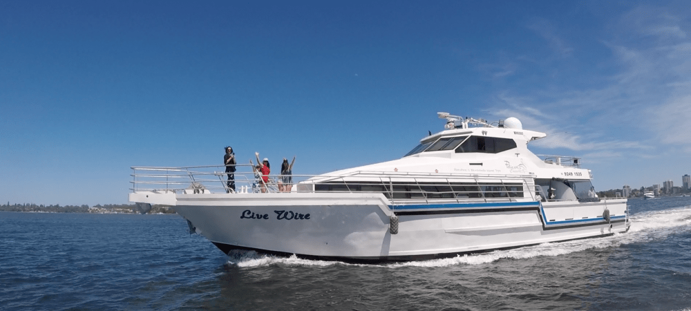 Live wire party boat hire